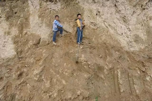 中国人创造的又一个奇迹:这个沙漠即将消失!  第4张