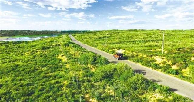 中国人创造的又一个奇迹:这个沙漠即将消失!  第1张