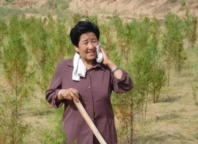 中国人创造的又一个奇迹:这个沙漠即将消失!  第8张