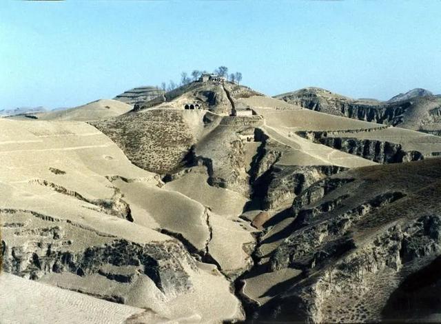 中国人创造的又一个奇迹:这个沙漠即将消失!  第9张