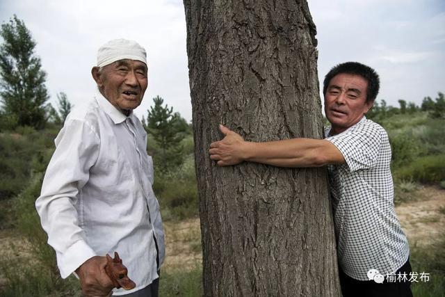 中国人创造的又一个奇迹:这个沙漠即将消失!  第11张