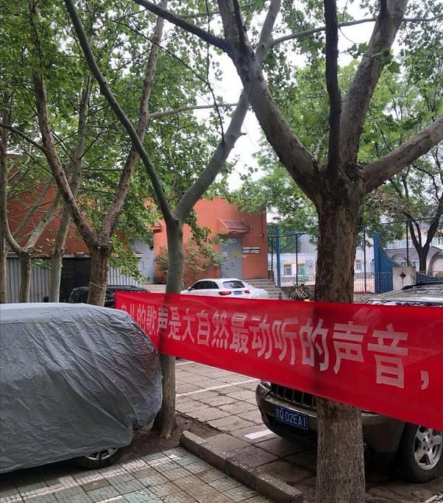 """北京丰台通告""""鸟屎掉别人车里后鸟窝被拆""""恶性事件  第2张"""