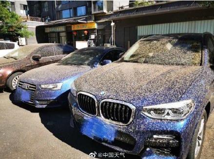 """今日,北京市被""""杀了个回马枪""""  第1张"""