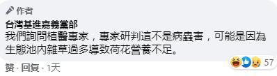 这也是国民党的锅?!  第4张