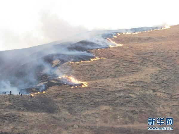 宁夏固原原州区荒山起火系群众上坟,9名涉事人员自首。  第1张